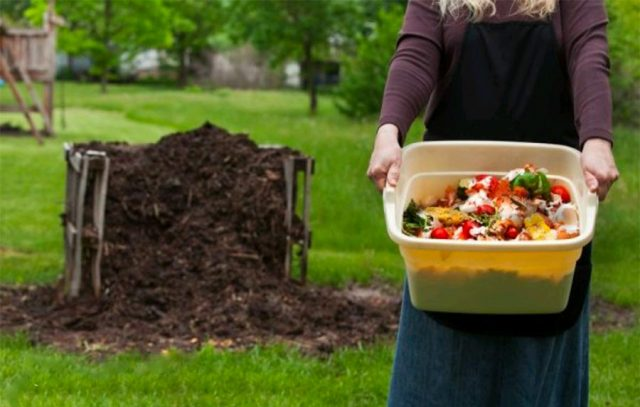 Making Compost Getting Your Hands Dirty
